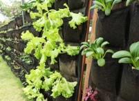 Vertical Garden Mengunakan Geotextile Non Woven