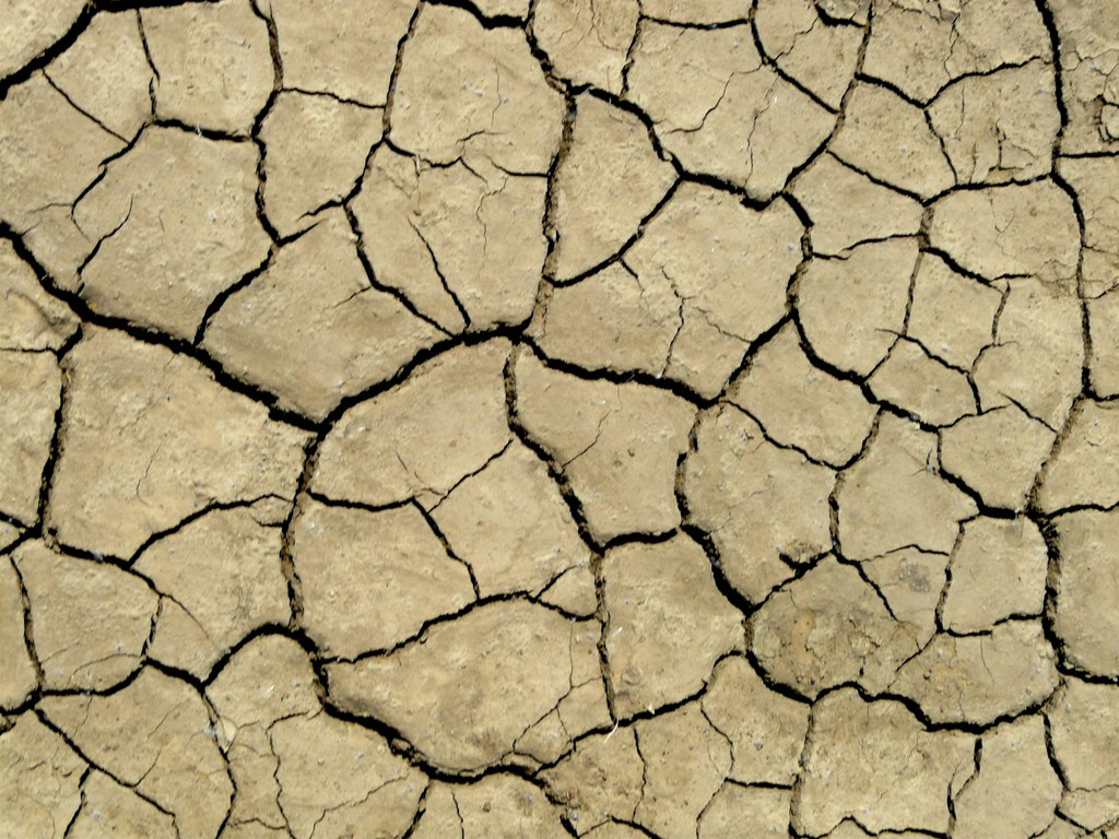 Clay-Soil-With-Cracks